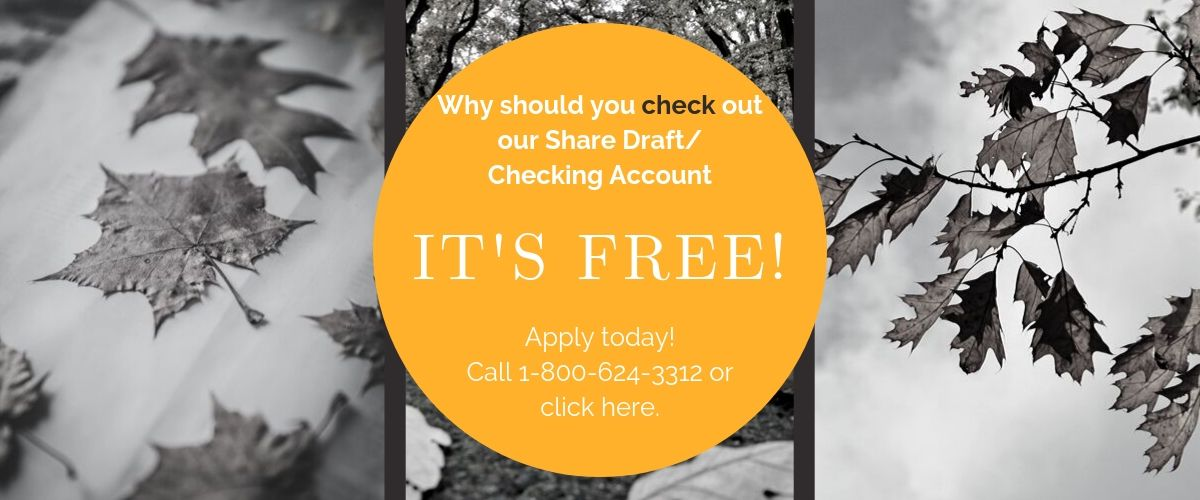 HEFCU offers FREE Share Draft/Checking with Free Debit Cards and Bill Pay! Go to https://www.hefcu.com/account/share-draft-account/ to learn more. Or Call 1-800-624-3312 and speak with a representative.